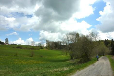 Landschaft bei Eging, die man beim wandern durchstreift.