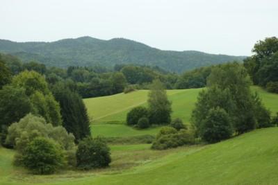 Die Wanderwegmarkierung Ahornblatt führt von Ranfels in den Nationalpark.