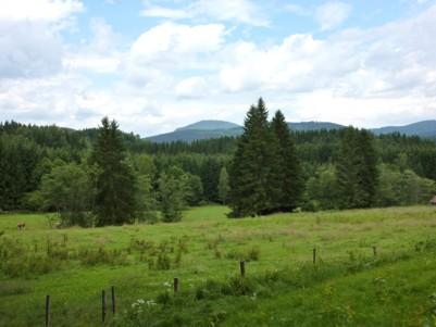 Blick auf den Falkenstein, ein Berg im Nationalpark Bayerischer Wald.