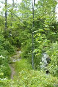 Am Steinbach