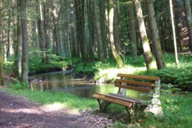 Wandern am Wasser im Bayerschen Wald bei Eging