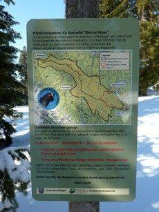 Markierter Weg für Schneeschuhtouren im Bayerischen Wald schützt das Auerhuhn.