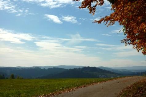Über Außenried Blick auf die Berge des Vorderen Bayerischen Waldes.