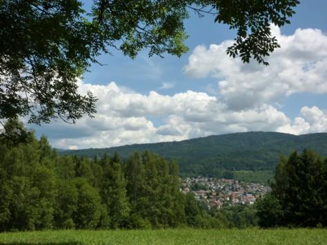 Blick auf Frauenau im Bayerischen Wald.