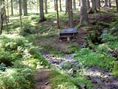 wandern im Bayerischen Wald.