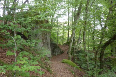 Schöner Wanderweg bei der Burg Ranfels im Bayerischen Wald.