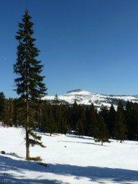 Schneeschuhtour mit Blick über den Hüttlschachten zum Kleinen Arber bei Bodenmais.