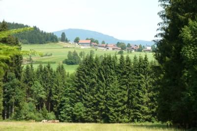 Blick auf Innenried.