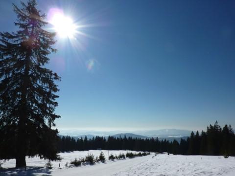 Blick über den Buchhüttenschachten zum Vorderen Bayerischen Wald.