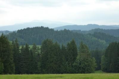 Blick auf den Rachel im Nationalpark Bayerischer Wald.
