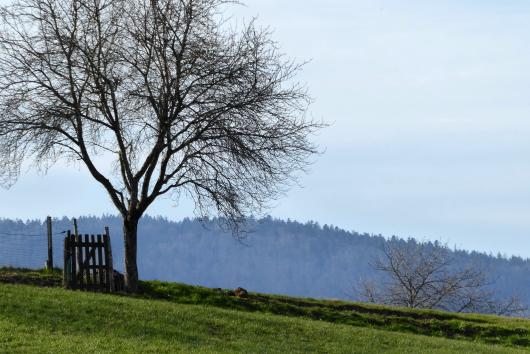 Schöne Blickwinkel im Bayerischen Wald.