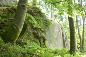 Felsen bei der Burg Saldenburg