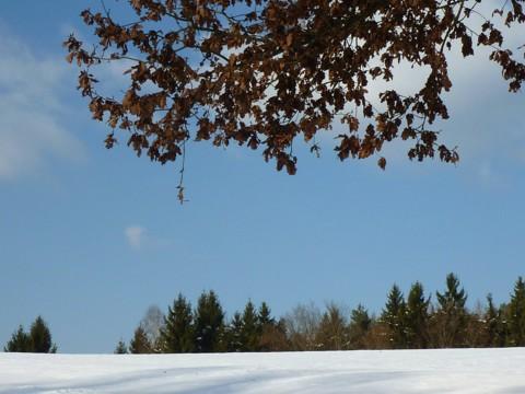 Der Brotjacklriegel ist links hinter dem Hügel und so nicht zu sehen.