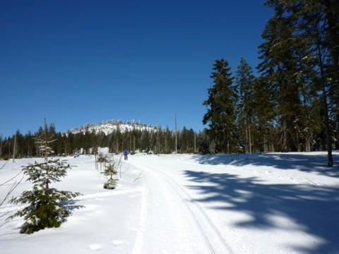Langlaufloipe und Winterwanderweg mit Blick zum Kleinen Arber.