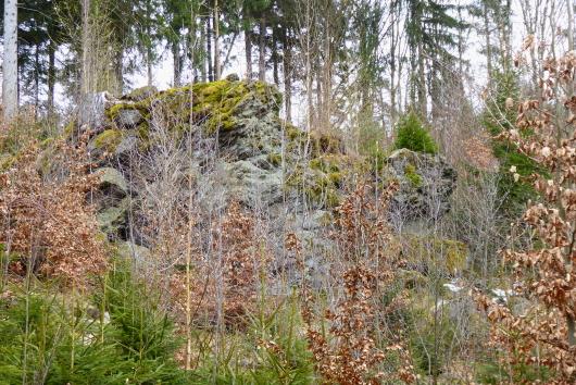 Ein Felsen wie gemacht für einen Luchs im Luchs-Streifgebiet des Bayerischen Waldes.