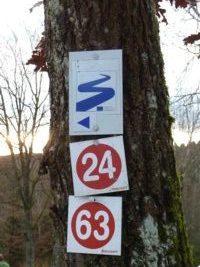 Wanderwegmarkierung in Ranfels im Bayerischen Wald. Blauer Goldsteig und rote Rundwanderwege.