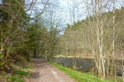 Rückweg an der Ilz von Kalteneck nach Schrottenbaummühle