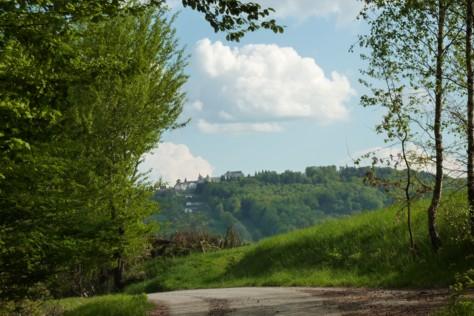 Blick auf Schloss Fürstenstein.