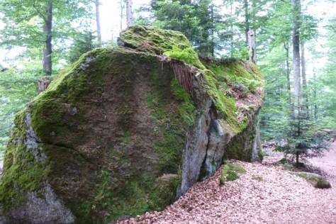 Schlussakkord - das Felswandergebiet gestreift.