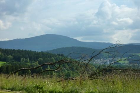 Der runde Rücken ist der Berg Falkenstein im Nationalpark.