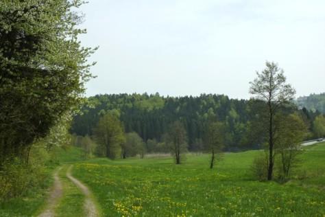 Rechts oben sieht man Schloss Fürstenstein.