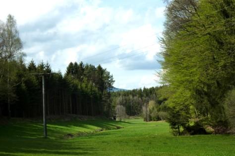 Eine einsame Wiese im Tal zwischen Harmering und Eging am See, die man beim Wandern durchstreift.