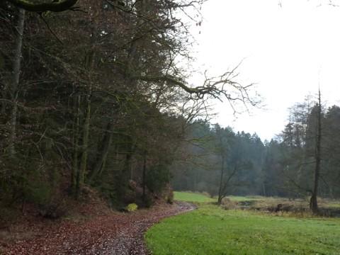 Eine Wanderung in stillen Tälern bei Ranfels, auf dem Kneistinger Wichtelweg.