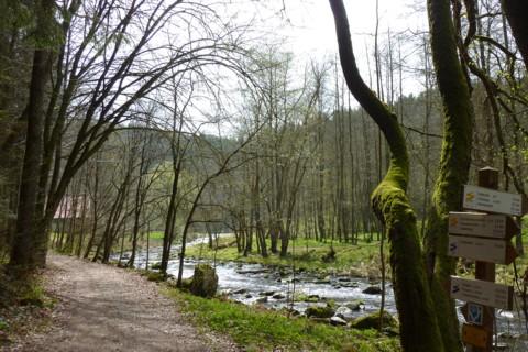 Die Wolfsteiner Ohe am Goldsteig bei Fürsteneck.